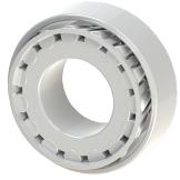 bearing_type_2